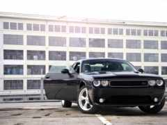 dodge, кар, muscle