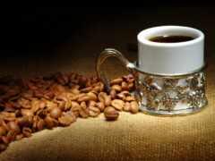 coffee, circle, seed