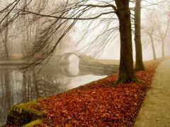 песен, осень, ответы