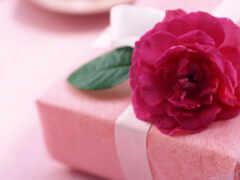 дар, give, цветы