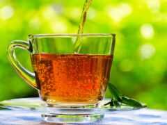напиток, природа, tasse