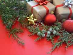 праздник, дар, new