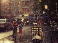 дождь, улица, summer