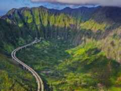 гора, лес, hawaii
