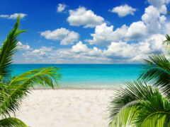 природа, пляж, tropical