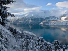 norwegian, природа, landscape