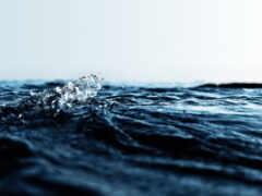 петербург, санкт, потоп