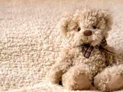 медведь, teddy, toy
