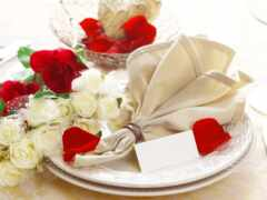 цветы, сервинг, роза