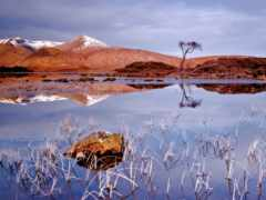 осень, озеро, landscape Фон № 96928 разрешение 1920x1200
