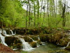 водопад, cool, природа