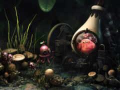 mushroom, который, katerogiya