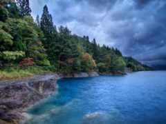 природа, лес, моря
