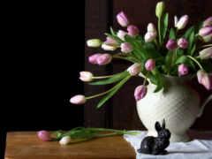 mesa, ваза, тюльпан
