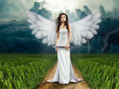 angel, девушка, collect