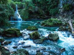 река, камень, мох