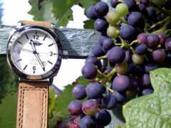 виноград, zdjęcia, abstract