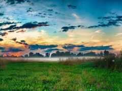 трава, mist, облако