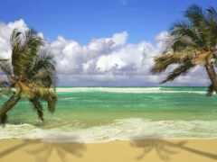 пляж, scene, песок