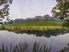 озеро, зеркало
