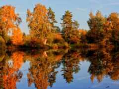 осень, landscape, природа