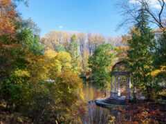 осень, garden, беседка