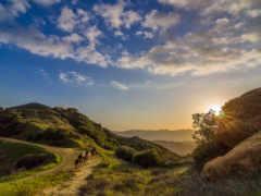 topanga, california, природа