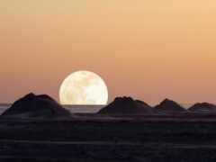 луна, море, elysium
