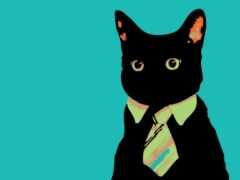 кот, создать, tie