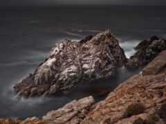 cove, exposition, california