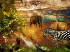 zebra, фотообои, жираф