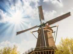 mill, поле, вышивки