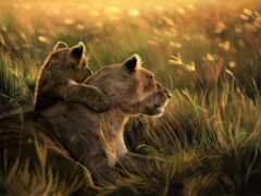 львенок, тигрица, трава