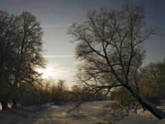 снег, winter, краска