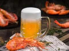пиво, gela, bir