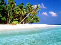 мальдивы, остров, maldive