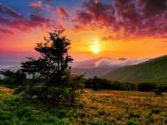 природа, самые, красивые