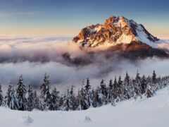 природа, снег, гора