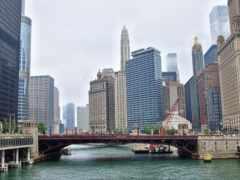 chicago, desktop, bulls