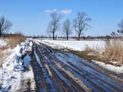весна, landscape, дорога