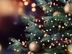 огни, новогодние, приглашают