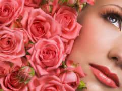 лепестки, роз, розы Фон № 162175 разрешение 2560x1600
