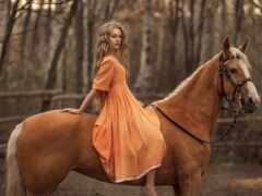 гнедой, rus, лошадь