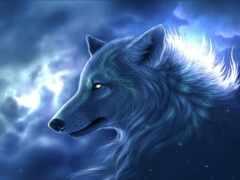 волк, animal, коллекция