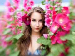 роза, devushki, девушка