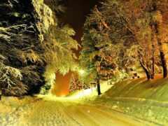 winter, дорогой, красивый