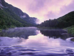 река, туман, туманом
