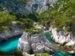 rock, гора, растительность