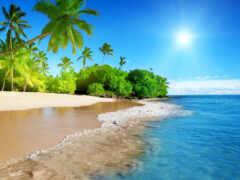 summer, море, пляж