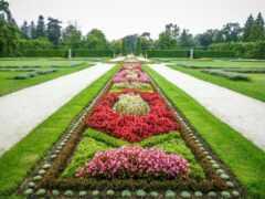 garden, дачный, клумба